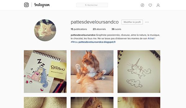 Pixel Le chat et Pattes de Velours sur Instagram