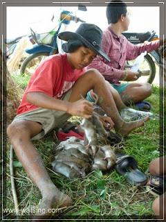 Kinder mit Reisfeldratten
