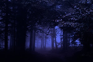 Gaming Events 2019 - Call For Submissions: Into the Woods (anthology) - infogaming7.blogspot.com