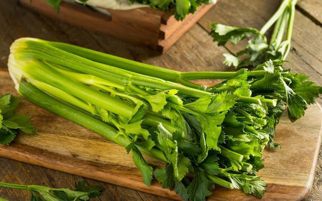 Manfaat Celery Untuk Asam Urat