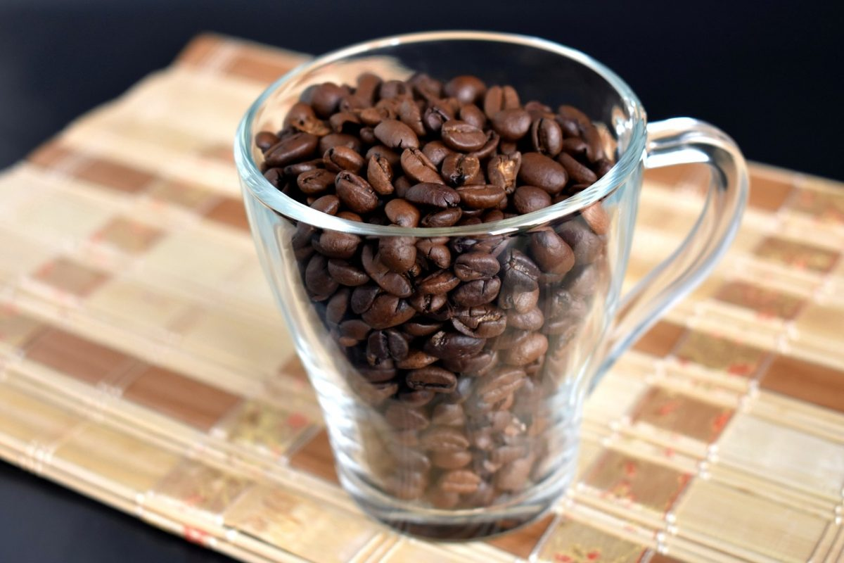 biji kopi arabika