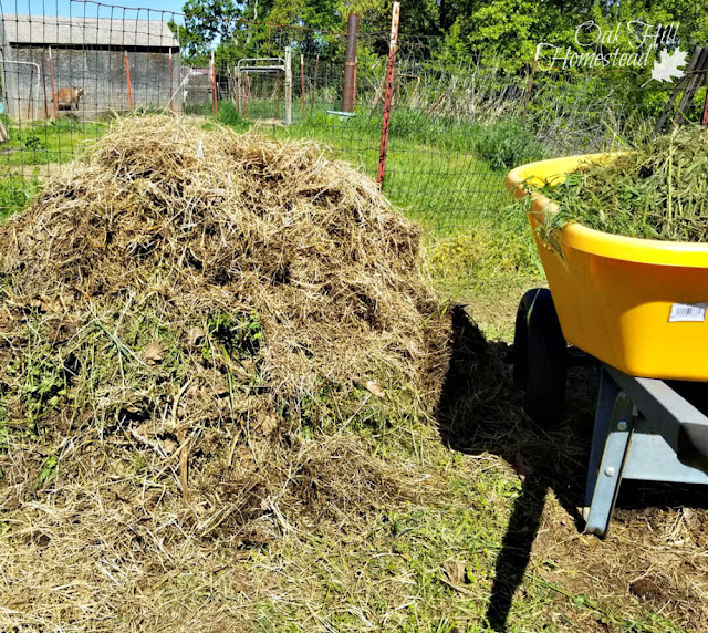 How to turn grass clippings, weeds, leaves and kitchen garbage into the best garden soil ever!