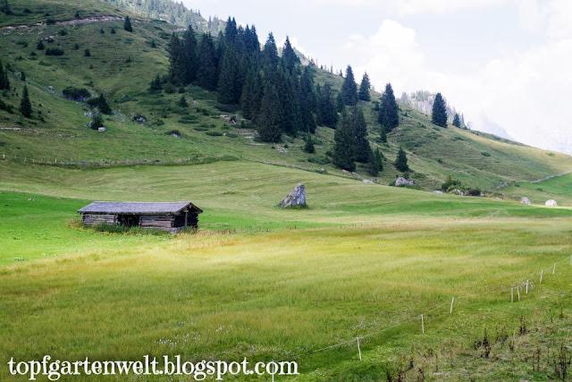 Wandern mit dem Kinderwagen rund um Salzburg - Blog Topfgartenwelt