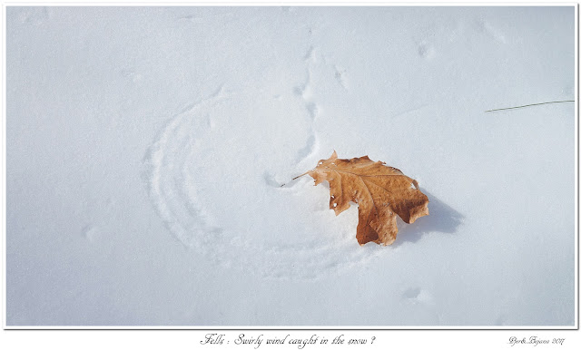 Fells: Swirly wind caught in the snow?