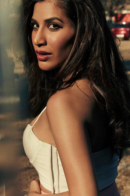 Sophie Chaudhary saree, hot, husband, saree online, lehenga, in saree, in lehenga, songs, movies, sajan main nachungi, engaged, and manish malhotra dead, wiki, biography