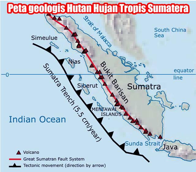 Gambar Peta geologis Hutan Hujan Tropis Sumatera
