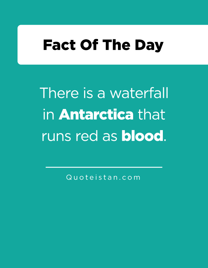 There is a waterfall in Antarctica that runs red as blood.