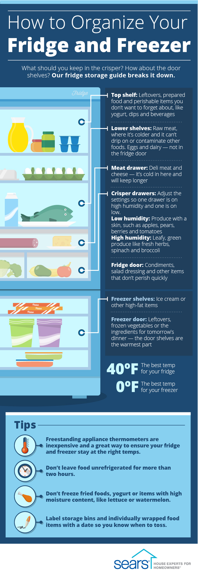 How to Organize Your Fridge and Freezer #infographic