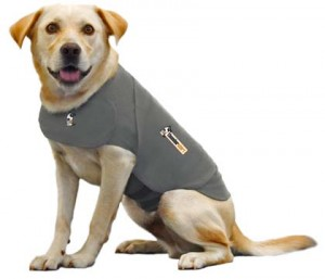 how long can you keep a thundershirt on a dog