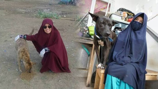 Haram Bagi Muslim Memelihara Anjing, Kecuali ...