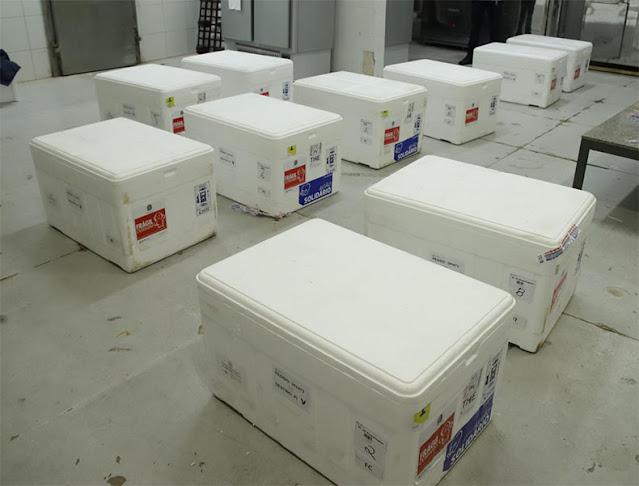 Piauí recebe 104 mil doses da vacina de AstraZeneca