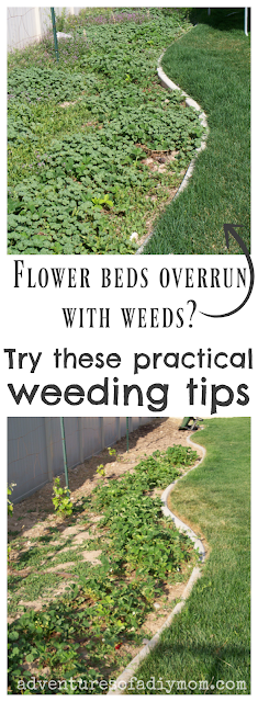 practical weeding tips collage