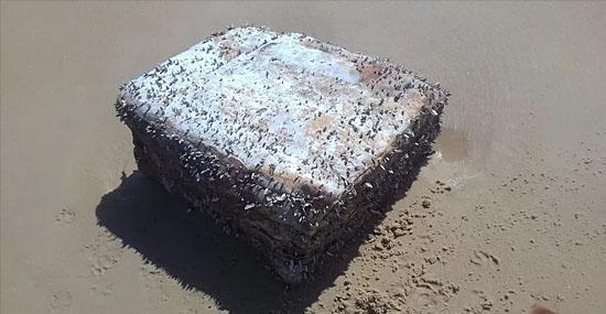 Misteriosas caixas não identificadas voltam a aparecer no litoral do Ceará - Capa