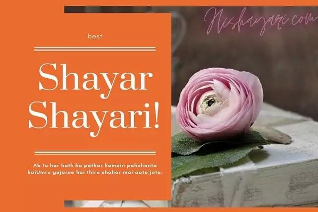 Shayari On Shayar In Hindi