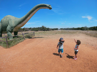 If you or your children love dinosaurs then Dinosaur Valley State Park in Glen Rose, Texas is the place to go.  It is a beautiful park where you can actually see dinosaur tracks not to mentions lots of hiking and the gorgeous Piluxy River to swim in.
