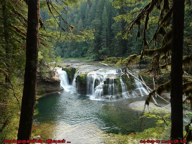 Lower Lewis Falls Washington