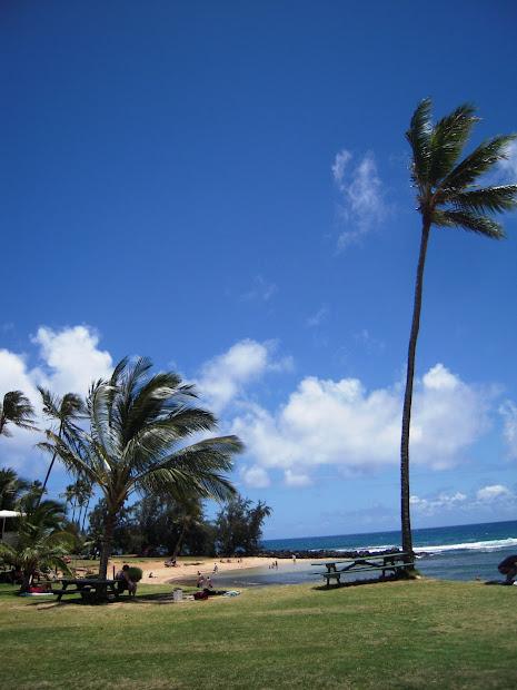 Patrick Tillett Poipu Beach - Kauai