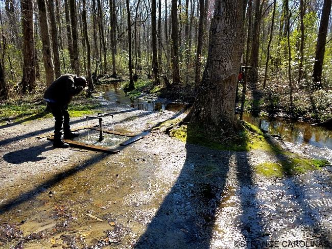 Healing Blackville Springs Carolina South