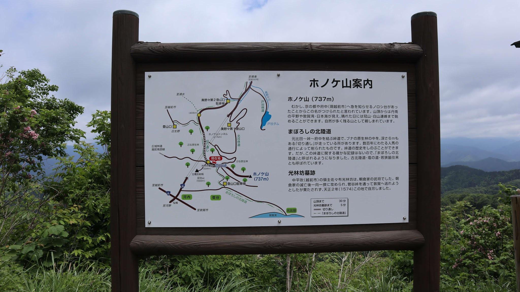 ホノケ山12