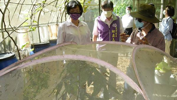 City Bear生態農場參訪 明道大學前校長推廣有機農業