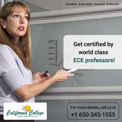 ECE Professor
