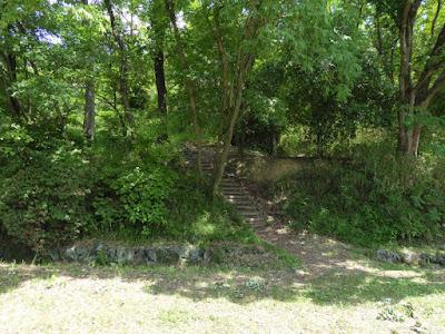 山田池公園のクワガタムシ 津之木山