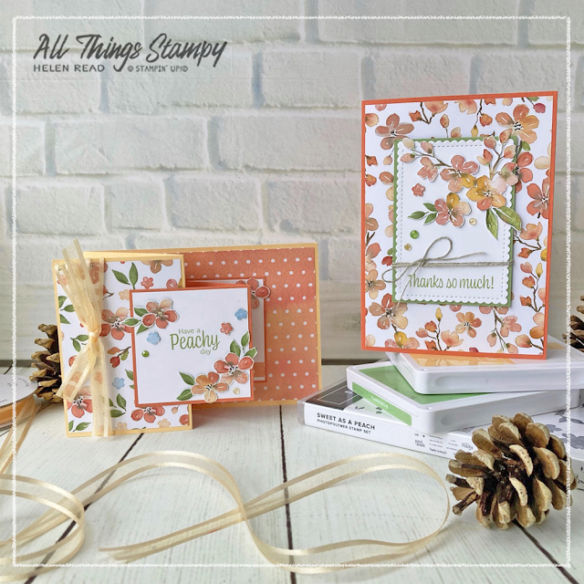 You're a Peach Suite Stampin Up Demonstrator Derbyshire