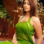 Richa Gangopadhyay Hot In Saree