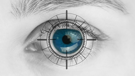 Researchers reveal molecular basis of vision
