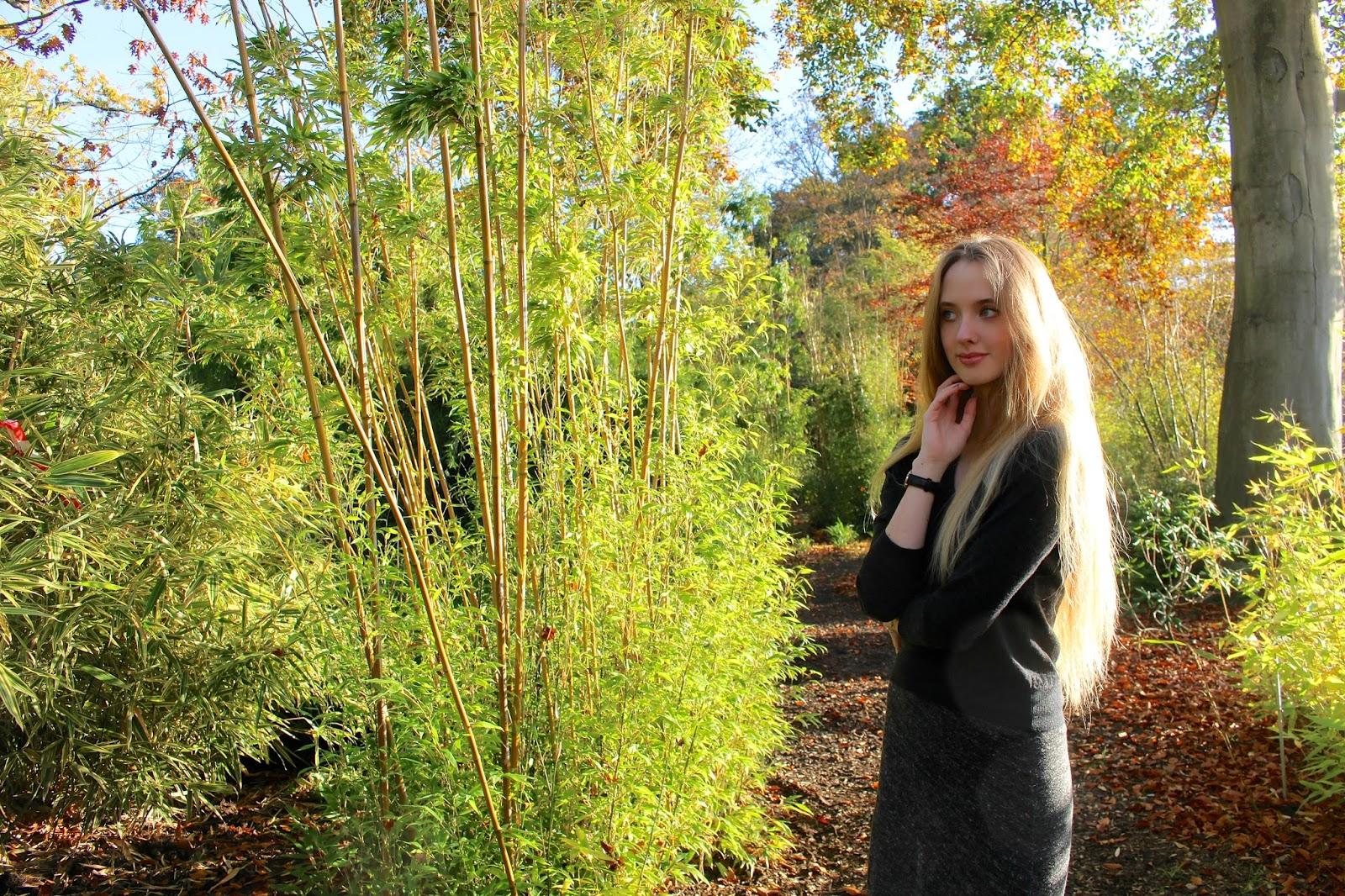 Autumn British Blog
