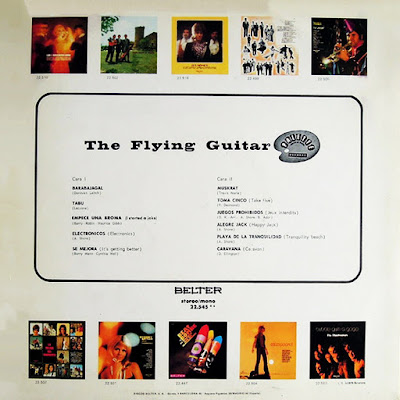 The Flying Guitar — The Flying Guitar (1969)
