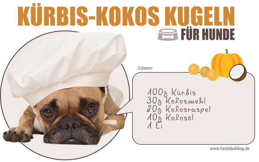 Hundekes Hundeleckerli Rezept Rezept: Kürbis-Kokos Kugeln für Hunde selbst backen