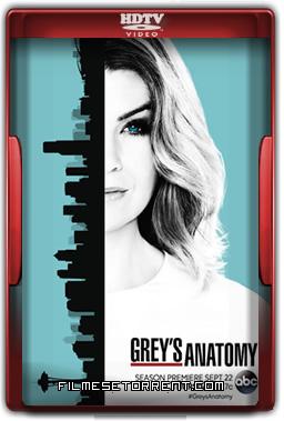 Greys Anatomy 13ª Temporada Legendado Torrent 2016 HDTV 720p 1080p Download