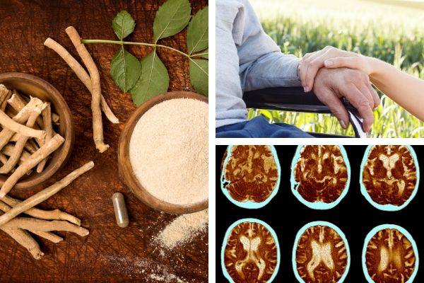 All You Need To Know About Herbal Treatment With Turmeric Curcumin Plus