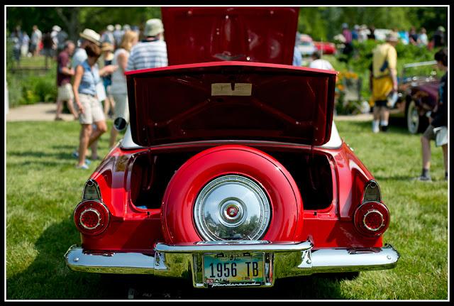 Vintage Cars; Antique Cars; Automobiles; Ault Park; Concours d'Elegance; Ford; Thunderbird