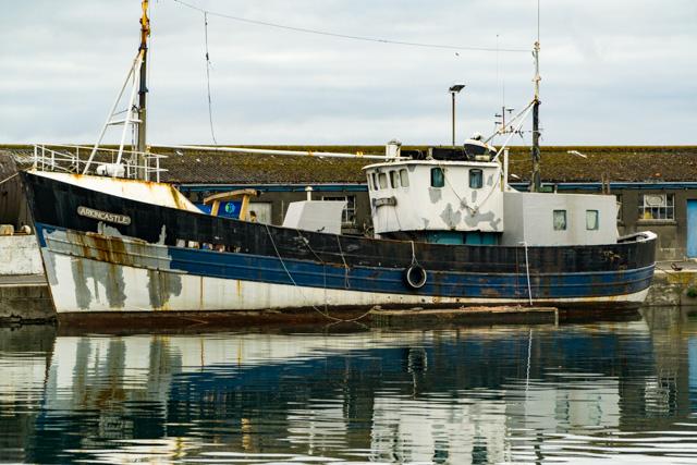 Through The Gaps Newlyn Fishing News Monday Morning