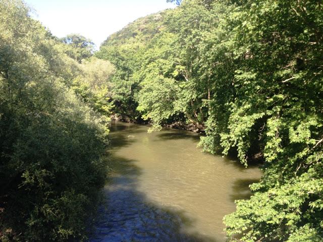 Εκδηλώσεις του Δήμου Λαρισαίων για την Ημέρα Περιβάλλοντος