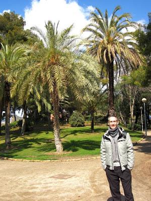 Palmeras en el Parque de Can Vidalet