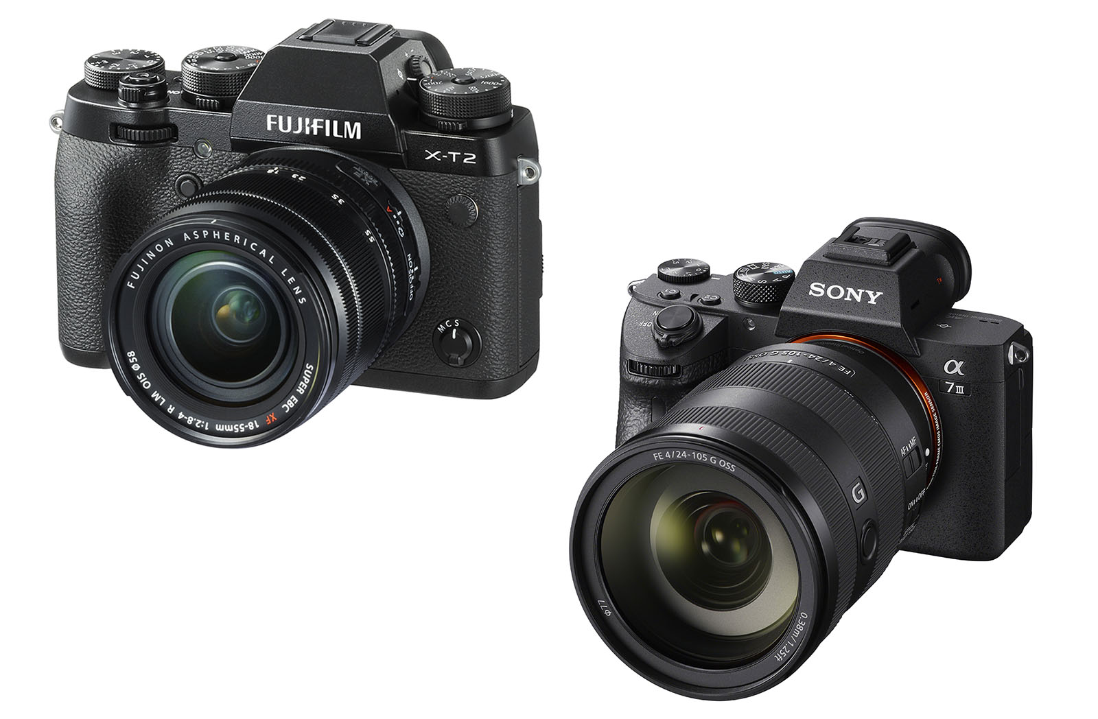 The Wandering Lensman: Fujifilm's Versus Sony's Customer