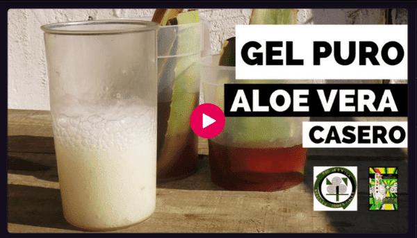 Video Cómo se hace Gel Puro de Aloe Vera