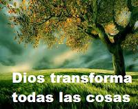 Quiero lo nuevo de Dios