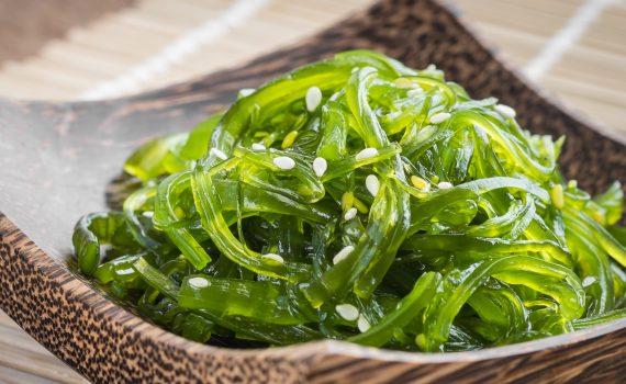 Alimentazione sostenibile e alghe