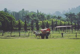 29 Tempat Wisata di Bandung Untuk Keluarga & Harga Tiketnya 2019
