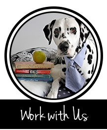 Button to collaborate work or play with the blog dogs of Dalmatian DIY