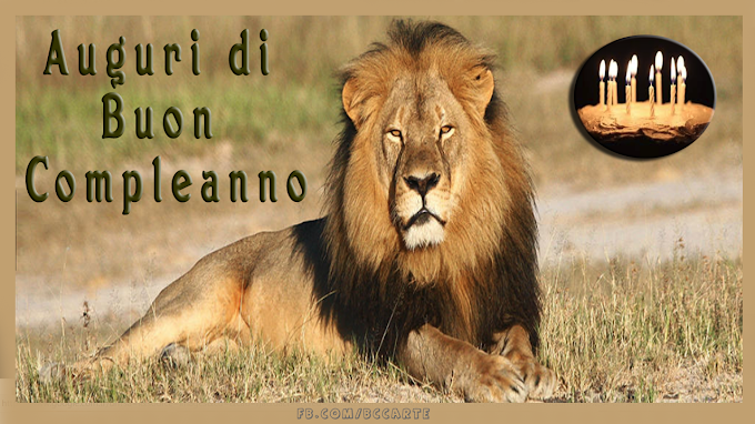 Cartolina d'auguri di compleanno del leone