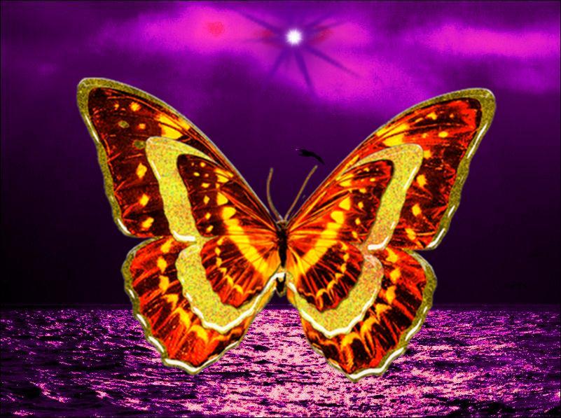 Fondos de mariposas butterfly for Imagenes 3d para fondo de escritorio con movimiento
