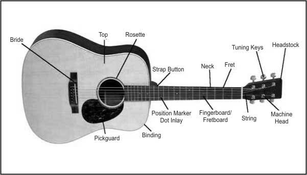 Guitar For Beginners    Kitaar Vir Dommies  Guitar Diagram