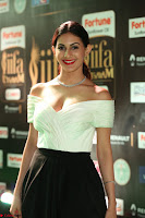 Amyra Dastur in White Deep neck Top and Black Skirt ~  Exclusive 036.JPG