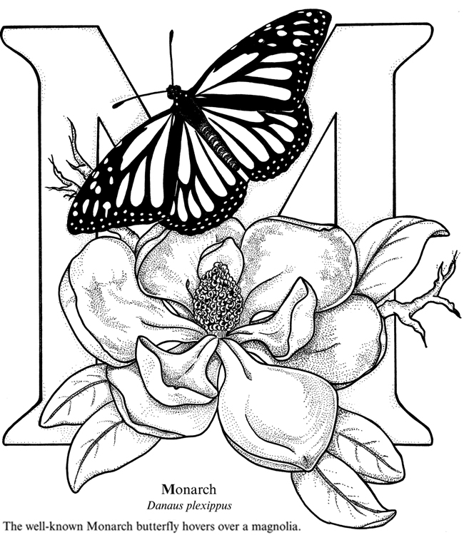 EXPOSE HOMELESSNESS: M IS FOR MONARCH BUTTERFLY BOUQUET
