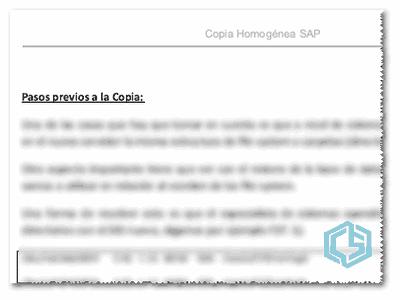 Copia Homogénea ERP SAP